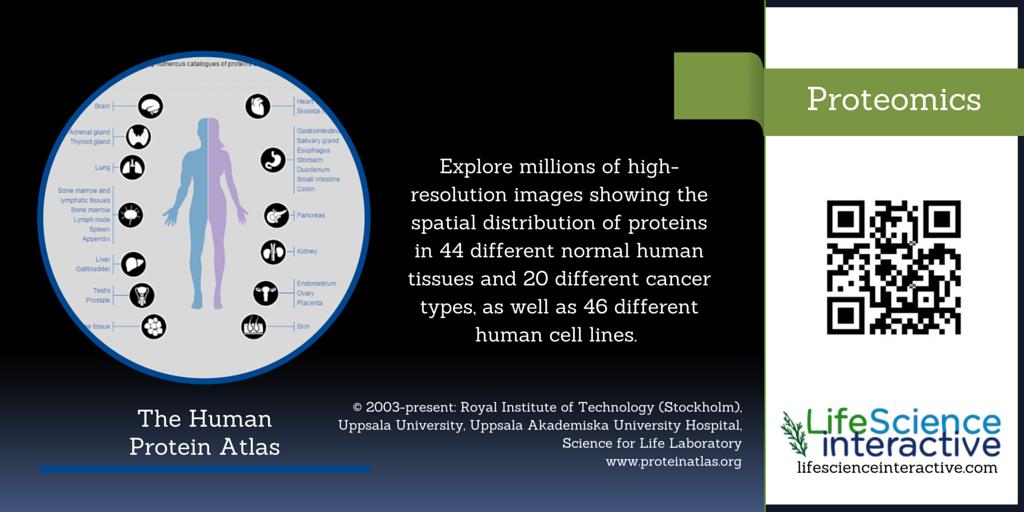 Proteomics - The Human Protein Atlas