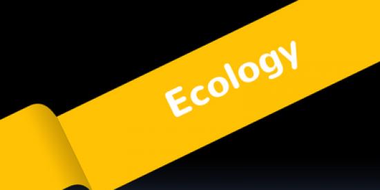 ecology-400x339