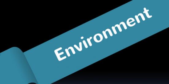 environment-400x339