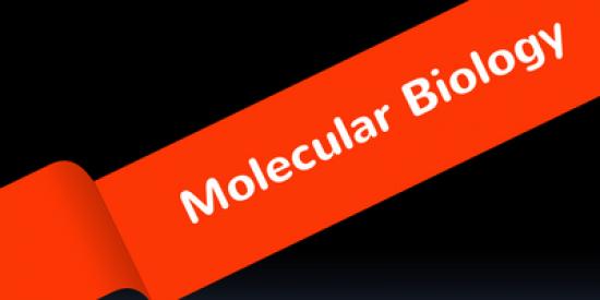 molecular-biology-400x339