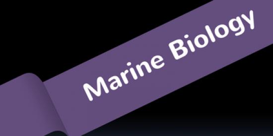 marine-biology-400x339